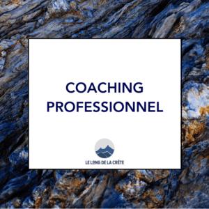 Laurette Cot_Le long de la crête_Coaching entreprises